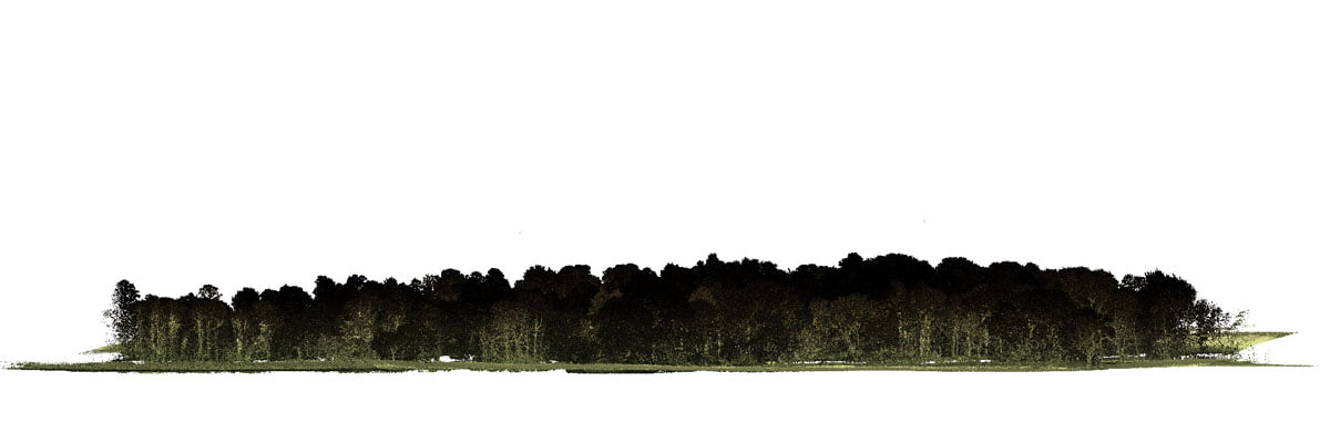 Point cloud of highly vegetated area covered with trees, displayed using LidarViewer.