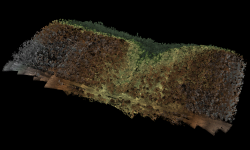 Full point cloud image of Sand Canyon containing over 3.2 billion points