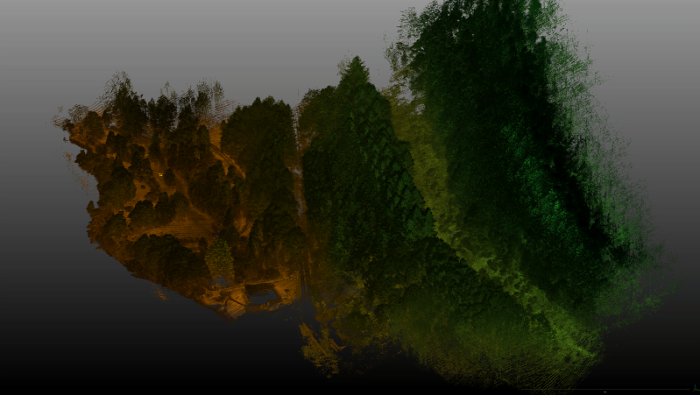 Kemnore Drummond Hill Lidar view including trees