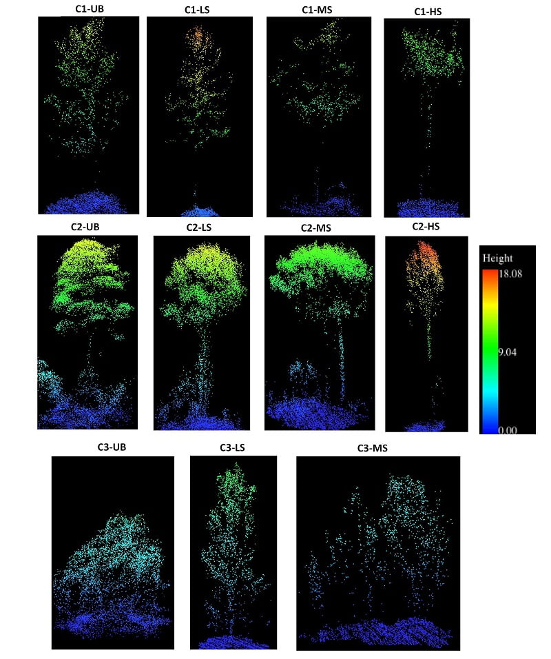 Point clouds of individual trees categorized by fire severity levels