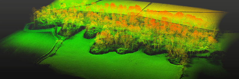 Routescene full point cloud with trees