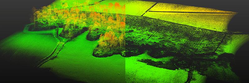 Barnelsy UAV LiDAR forestry DTM